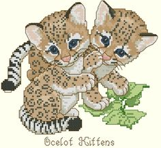 Ocelot Kittens by Gloria & Pat