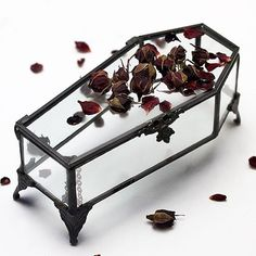 Jewelry Box LOVE YOU TO DEATH. Jewellery Casket – REGALROSE More - Glass coffin jewellery casket. Store your Regal Rose jewels in our coffin shaped jewellery box casket. SIZING width x depth x length (including legs). Slytherin, All The Bright Places, Goth Home Decor, Gothic House, Home And Deco, Casket, Coffin, Room Decor, House Design