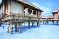 Prentresultaat vir club med bintan island Bintan Island, Things To Come, Earth, Shapes, Landscape, Architecture, Buildings, Aqua, Arquitetura