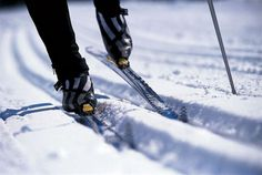 skiing cross country - Google Search