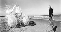 Dynamic and interdisciplinary, Jansen's Strandbeests (beach animals) blur the lines between art and science, sculpture and performance. The exhibition will celebrate the thrill of the Strandbeests' unique locomotion as well as the processes that have driven their evolutionary development on the Dutch seacoast.