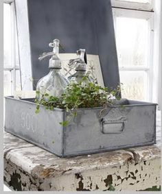 gorgeous! galvanized tray with seltzer bottles and ivy
