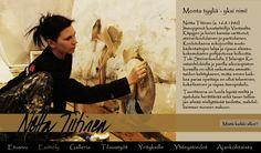 Netta Tiitinen, taitelija