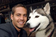 Paul Walker, Eight Below. My daughter's name Maya was inspired by one of the dogs in the movie. What a preventable tragedy his death was.