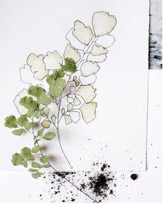 細緻優雅的水彩插畫襯上食物攝影 | ㄇㄞˋ點子靈感創意誌