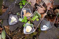 Un Artista conserva la belleza de la naturaleza en joyeria de vidrio prensado | spirulinaeco