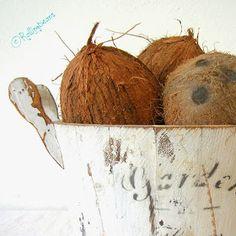 come fare l'olio di cocco in casa