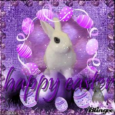 Happy Easter Gif, Happy Easter Wishes, Happy Easter Greetings, Easter Wishes Pictures, Ostern Wallpaper, Holiday Gif, Easter Hunt, Easter Parade, Easter Crafts For Kids
