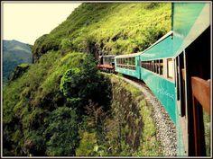 Trem de Mariana para Ouro Preto.  Fotografia de Wellington Diniz