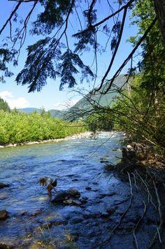 Coquihalla River at Sowaqua Creek Road,Hope