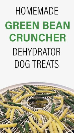 Are you watching your dog's weight? The perfect mix of healthy beans and tantalizing meat flavour, try making these low calories snacks dehydrator dog treats that your pooch will love. Pumpkin Dog Treats, Homemade Dog Treats, Healthy Dog Treats, Dehydrator Dog Treats, Dehydrator Recipes, Pet Care Tips, Dog Care, Pet Tips, Dog Treat Recipes