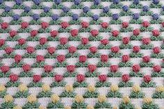 Tulip Field blanket