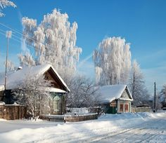 Winter in a Russian village. Snow. Blue sky. Beautiful pic.