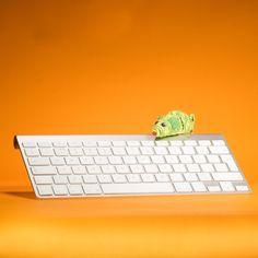 Happy Weekend! #Evoso #DigitalMarketing #Marketing #Photography #Digital #Photo #Product #Video #Design #Backdrop #Pinterest #Instagram #Facebook #Twitter #keyboard #mouse #cat #toy #Orange Orange Art, Colour Inspiration, Happy Weekend, Keyboard, Digital Marketing, Backdrops, Art Photography, Toy, Facebook