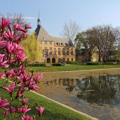 saint mary's college notre dame - Google Search