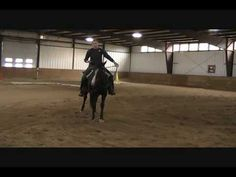 Horse Training:  How to Slow Down a Horse and Create Softness