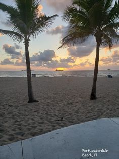 Beautiful sunrise in seabreeze fortlauderdale Florida Palm Trees, Free Postcards, Beautiful Sunrise, Celestial, Sunset, Outdoor, Outdoors, Sunsets, Outdoor Games