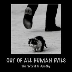 """""""The only thing necessary for evil to triumph is for good men to do nothing. Self Motivation, Animal Rights, Sociology, A Good Man, Animal Rescue, Pet Adoption, Animal Pictures, Real Life, Poetry"""