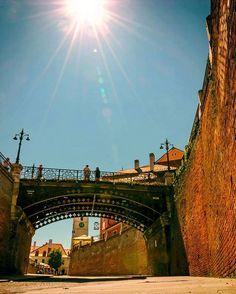 © Photo: Cristian Dumitriu   #sibiu #romania #mysibiu #prinsibiulmeu #sibiumylove Sibiu Romania, Vineyard, Outdoor, Outdoors, Vine Yard, Vineyard Vines, Outdoor Games, The Great Outdoors