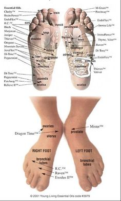 Foot chart - top and bottom #youngliving #essentialoils