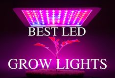 Best LED Grow Lights      In this article we'll discuss what LED Grow Lights are, what are the benefits, and how to choose the bestLED grow lights for you. Scroll downfor our top grow light reviews.  LED Grow LightOverview  For decades, indoor growers have relied on artificial light sources such as HID, High Pressure