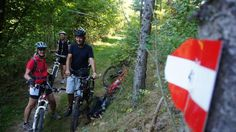 Berg, Kirchen, Alter, Bicycle, Linz, Messages, Circuit, Hiking, Fall