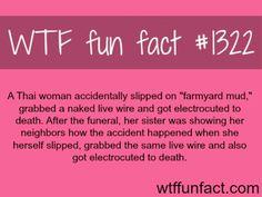 Fact 1322