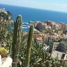 ...Monaco