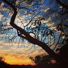 Conheça de perto as belezas de Jalapão, no estado de Tocantins, e aproveite momentos como este belíssimo click registrado por @viajandocomeles.