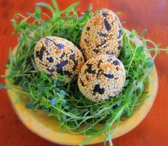 MINDFUL LIFESTYLE & DECOR IN SOUTHERN OREGON STYLE LIVING: Spring Bird Seed Eggs, Mindfully Crafted