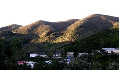 This is a picture of Ngaio, (pronounced nigho) New Zealand, we used to own the house with the read roof!!