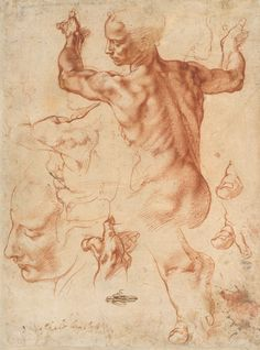 Study For The Libyan Sibyl, Michelangelo Buonarroti (ca. 1510–11)
