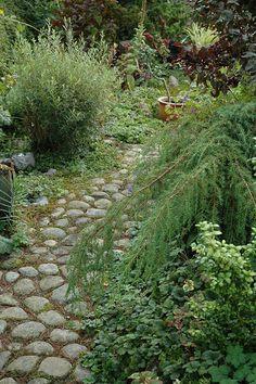 HAVETID: Blot slentre gennem haven.