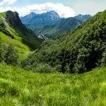 Toscana, Apuane. Il bosco del Fatonero   #TuscanyAgriturismoGiratola