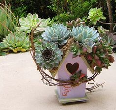 The Succulent Perch designs Succulent Rooftop Birdhouses in assorted finishes for all gardens and it's a perfect gift