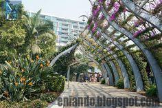 www.eniando.blogspot.com - The Arbour in South Bank Quiza quieras más información turística y arquitectónica del corredor, entra aquí!!!