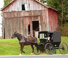 Amish couple in horse-driven buggy in rural Holmes County, Ohio, September 2004