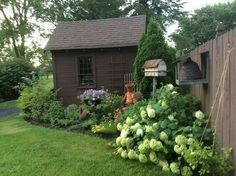 Love This Garden And The Bee Skep On Fence Is Divine Diane Wallace Shed Landscaping