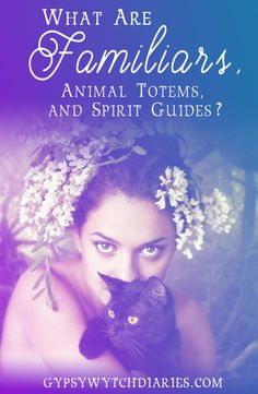 What's our spiritual connection to animals, and what's the difference between familiars, animal totems, and animal spirit guides? This article discusses where these terms come from and how to identify what type of connection we have with each of these typ Types Of Witchcraft, Wicca Witchcraft, Magick, Animal Spirit Guides, My Spirit Animal, Native American Spirituality, Different Types Of Animals, Power Animal, Modern Witch