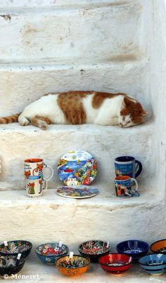 Nap time in Santorini , Greece