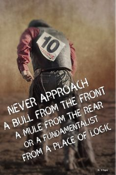 Never approach a bull from the front, a mule from the rear or a from a place of logic. Atheist Meme, Slogan, Religion, Writing, This Or That Questions, Memes, Quotes, Quotations, Religious Education