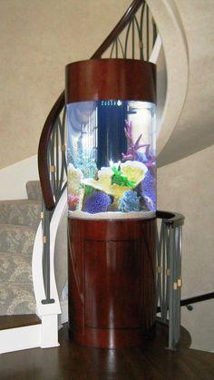 25 Amazing Aquariums you wish you had!!