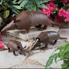 There are numerous types of tortoise, including the Red Footed Tortoise, the African Spurred Tortoise, and the species picked most commonly as pets Red Footed Tortoise, Cute Corgi, Metal Planters, Western Homes, Little Critter, Armadillo, Metal Artwork, Westerns, Garden Sculpture