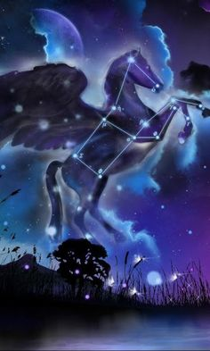 Image result for pegasus constellation