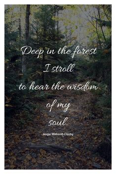 Love Nature Quotes Trees 53 New Ideas Love Nature Quotes, Mother Nature Quotes, Nature Quotes Adventure, Quotes About Nature, Trees Quotes Nature, Nature Nature, Oprah, Forest Quotes, Quotes About Forest