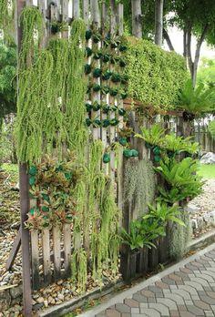 Jardim vertical é a solução para a falta de espaço. Veja como planejar a parede verde