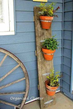 Terra Cotta Flower Pots Display on a Barn Board.