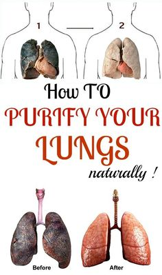 Natural Cures 13 Ways you can purify your lungs naturally! Lung Detox, Lung Cleanse, Body Cleanse, Body Detox, Health And Wellness, Health And Beauty, Health Fitness, Health Care, Simply Health