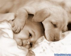 Adorable puppy with baby