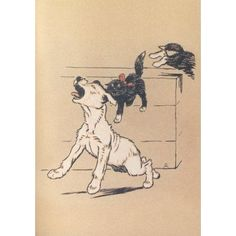 The White Puppy 1909 Attacked by the cats Canvas Art - Cecil Aldin (18 x 24)